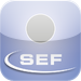 Swiss Economic Forum (SEF)